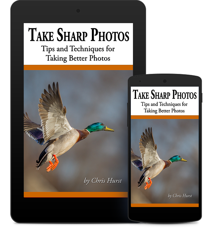 Take Sharp Photos